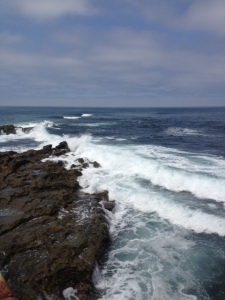 Blog_Ocean