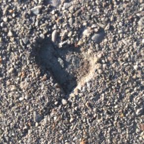 Blog_heart 2 cement