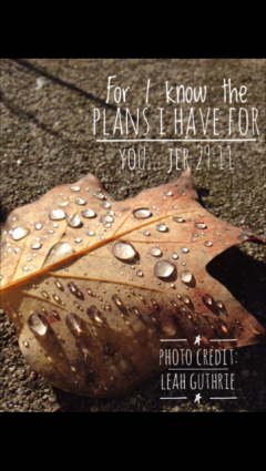 blog_photos-oct